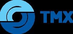 ТрансМашХолдинг, Группа компаний