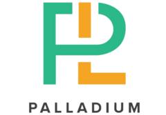 Палладиум Консалт