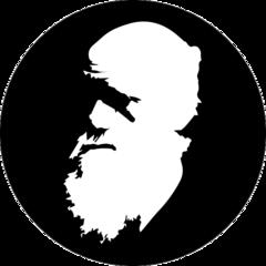 Darwin School