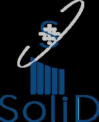 Солид, Группа компаний
