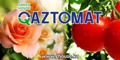 «Greenhouse-Qaztomat» (Гринхаус-Казтомат)