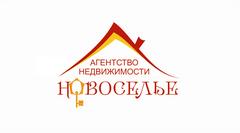 АН Новоселье