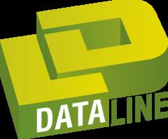 DataLine, Компания