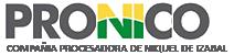 COMPAÑIA PROCESADORA DE NIQUEL DE IZABAL S.A.