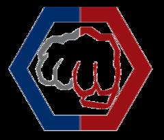 Общероссийская Федерация профессионального рукопашного боя