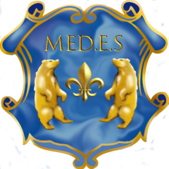 Агентство MEDES