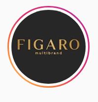 FIGARO GROUP
