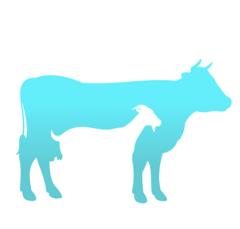 Коза&Корова
