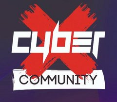 Cyber X (ИП Постников Павел Сергеевич)