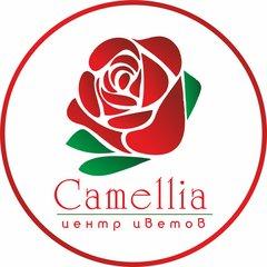 Центр цветов Camellia