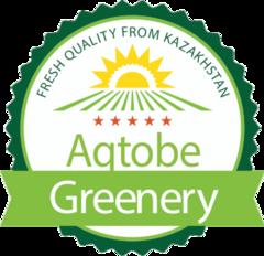 Green Capital Kazakhstan