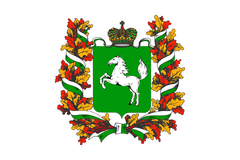 Департамент по вопросам семьи и детей Томской области