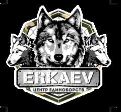 Еркаев Владимир Васильевич