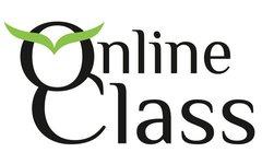 Онлайн класс