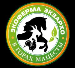 Экзархо Инга Георгиевна