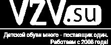 VZV.su