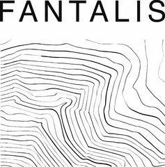 Архитектурно-строительная компания FANTALIS