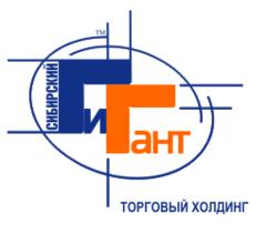 Сибирский Гигант, Торговый холдинг