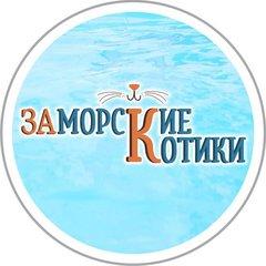 Заморские Котики