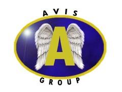 Avis Group
