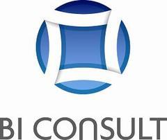 BI Consult