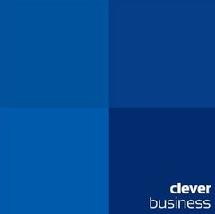 Clever Business Ltd.