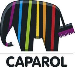 Caparol, Группа компаний