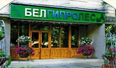 Белгипролес