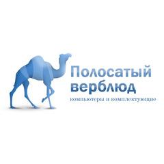 Полосатый Верблюд
