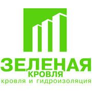 Зеленая Кровля