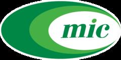 Минскинтеркапс