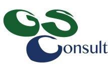 GS Consult