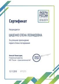Сертификат за успешное прохождение тестирования на способности (вербальные,числовые, логические)