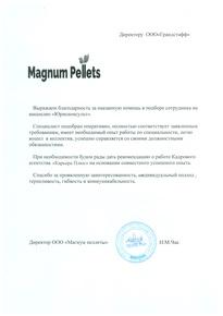 Рекомендация Magnum Pallets
