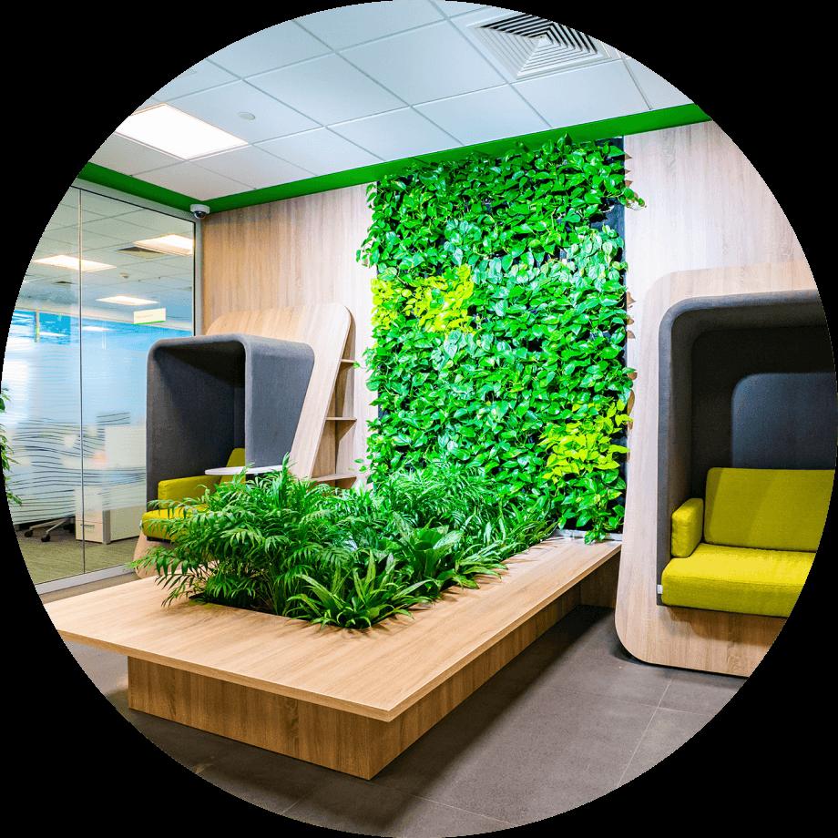 Зелёная зона отдыха в офисе