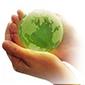 КЭФ «Живая земля»