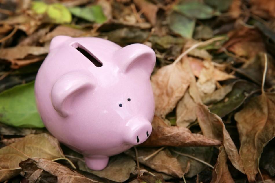 Самые высокие зарплаты октября