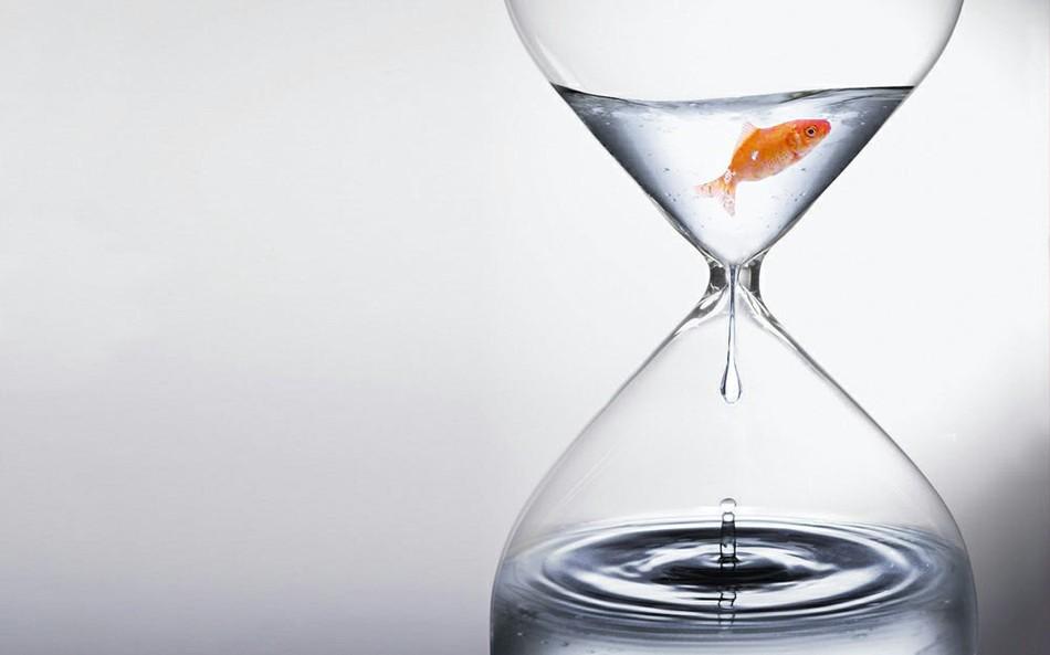 Где «прячется» свободное время?
