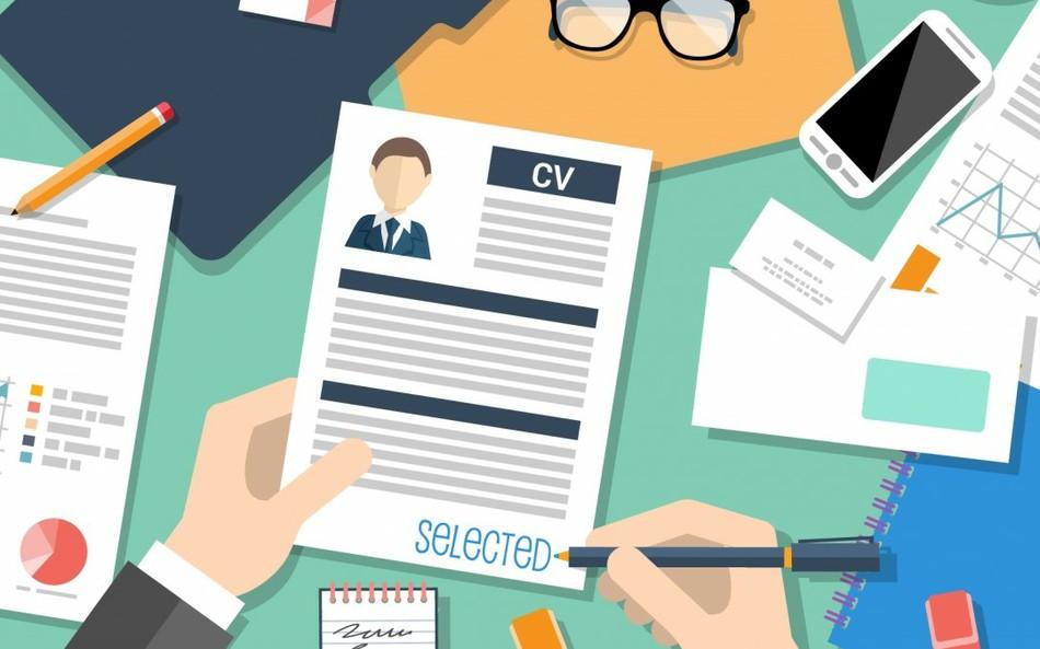 Как часто работодатели указывают в вакансиях заработные платы?