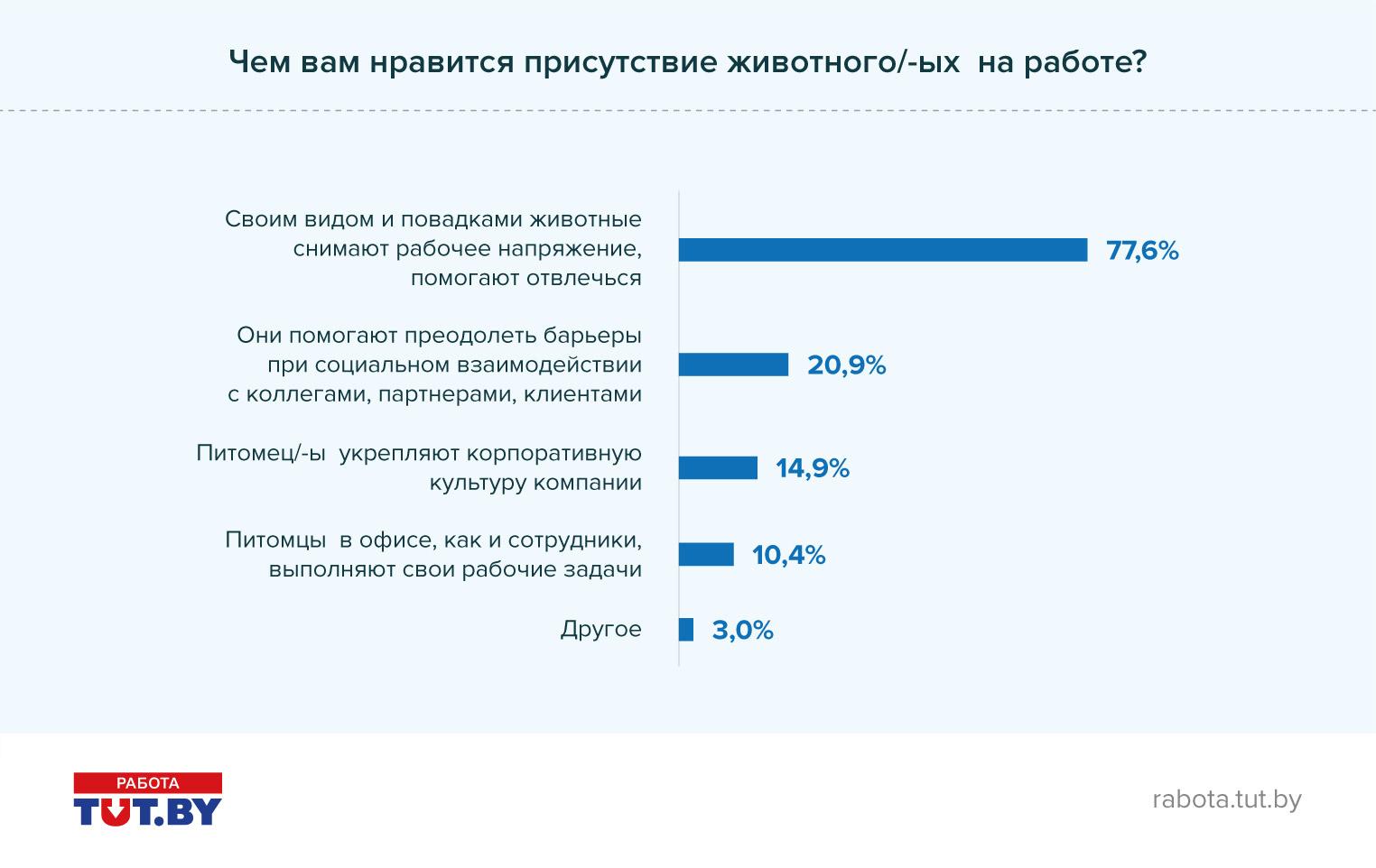 Есть ли место зверям в белорусских офисах?