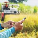 Як пройшов 2019 рік для аграрної сфери