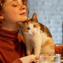 Удалёнка и характер: кому легко работается дома (нет, это не про интровертов)