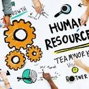 Ключова роль HR у бізнесі